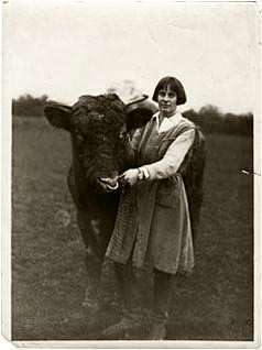lady eve balfour with bull